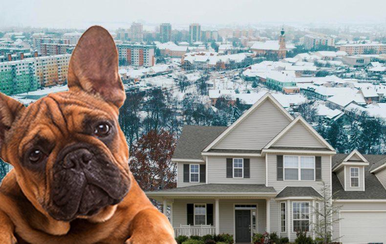 Vznikla vám daň z nehnuteľnosti alebo za psa? Toto je termín daňového priznania pre Seredčanov