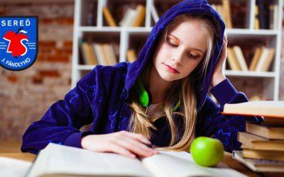 Základná škola Juraja Fándlyho sa v testovaní žiakov dostala medzi 25% najúspešnejších škôl