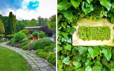 Naši čitatelia nám dokázali, že majú najkrajšie záhradky v regióne. Tieto fotky si jednoducho zamilujete