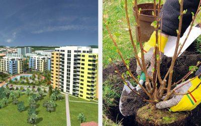 Na tomto sídlisku v Seredi sa budú už túto sobotu vysádzať stromy, osádzať cyklostojany alebo vytvárať záhony