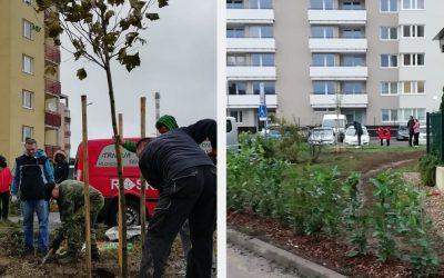 Zelené finále projektu Sereď 2.0. Susedia si spoločne vysadili stromy a skrášlili sídlisko
