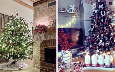 Pozrite sa na tú nádheru. Vianočné stromčeky Seredčanov sú naozaj krásne a plné farieb