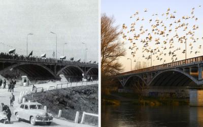 Pozrite si unikátne video z výstavby seredského mosta v roku 1958 a prečítajte si zaujímavosti z histórie seredských mostov