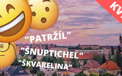 """KVÍZ: Na čo sa používa """"parazól"""" a dá sa """"škvarelina"""" jesť? Odhaľte zákutia seredského nárečia"""