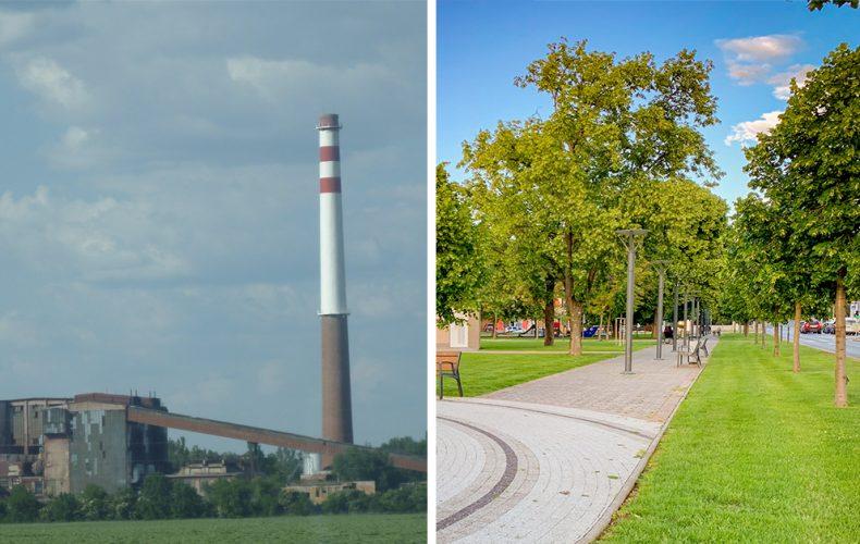 Na odbúravaní nečistôt z ovzdušia v mestách sa najviac podieľajú stromy. Je ich podľa vás v Seredi dosť?