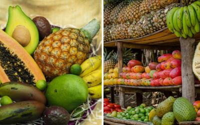 Navštívte Africké trhy, ktoré sú čoraz viac populárnejšie. Unikátne ovocie a koreniny kúpite priamo z Afriky