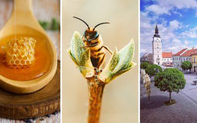 Tento unikátny Trnavský včelársky festival musíte navštíviť. V Trnave na vás čaká budúci týždeň skvelý program