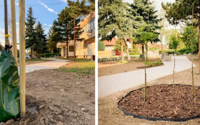 Mesto Sereď je jedným z víťazov v súťaži Ekologický čin roka 2019