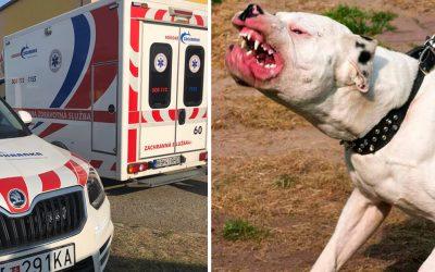 Včerajší útok agresívneho psa v Seredi na staršiu ženu skončil streľbou. Nebezpečný pes bol zastrelený