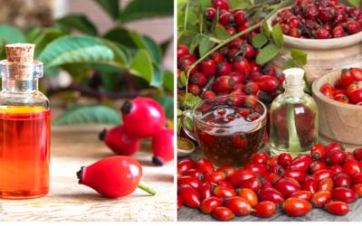 Šípková sezóna je v plnom prúde aj v Seredi. Viete, čo všetko sa dá z týchto skvelých plodov vyrobiť?