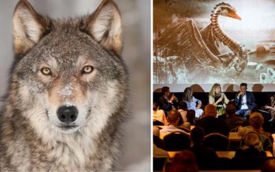 Filmový festival Ekotopfilm sa tento rok uskutoční online. Prečítajte si, aký problém sa rieši tento rok
