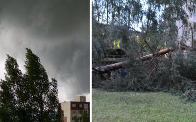 Počas dnešného dňa bude veterná búrka Hermine naberať na sile. V celej Európe napáchala škody