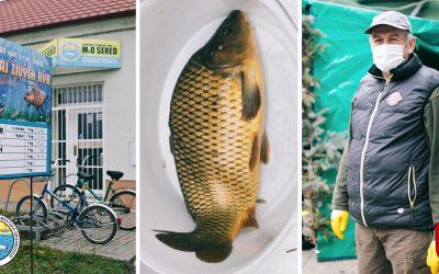 Vianočný predaj rýb v Seredi je spustený! Vieme, kde nájdete najkvalitnejšie ryby v našom meste, ktoré chutia fantasticky