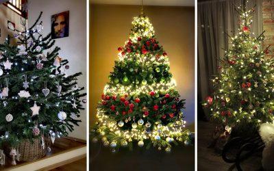 Zaplavili ste nás nádhernými vianočnými stromčekmi. Domácnosti v Seredi doslova žiarili. Pozrite si niektoré z nich