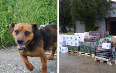 Ďakujeme dobrým ľuďom v Seredi, že pomáhajú opusteným zvieratkám. Do OZ Tulák Sereď dorazila zásielka krmiva