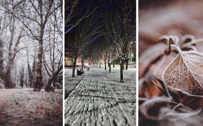 Pokochajte sa krásou zimy v podaní seredských fotografov. Naša príroda je v zime jednoducho nádherná