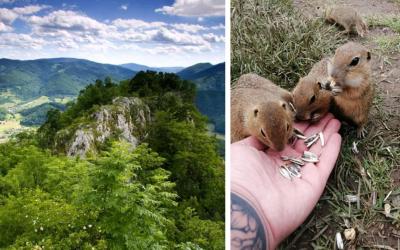 Slovensko má tretí najkrajší národný park v Európe. Viete, ktorý to je?