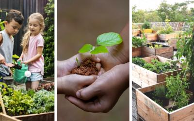 Komunitná záhrada v Seredi? Pomôžte nájsť vhodný pozemok na jej založenie