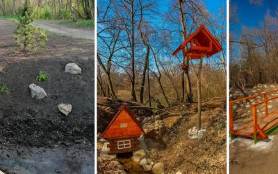 V Bobrovej dolinke v Šintave včera odcudzili 9 kusov stromčekov aj s kýbľom na vodu. Pomôžeme nájsť páchateľa?