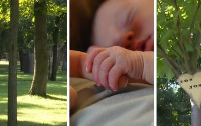 V Galante budú môcť rodičia pri narodení dieťaťa vysadiť strom života v Sade pre novorodencov