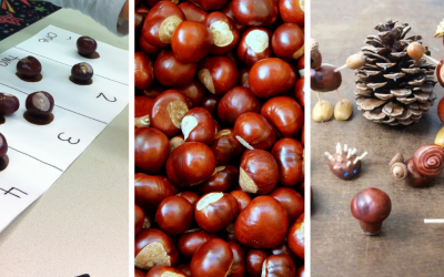Zahrajte sa s deťmi jesenné hry. Prinášame vám 13 Montessori aktivít s gaštanmi, ktoré podporia ich motoriku, kreativitu a trpezlivosť